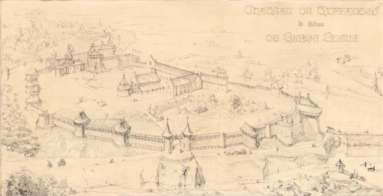 Projet de reconstruction du château